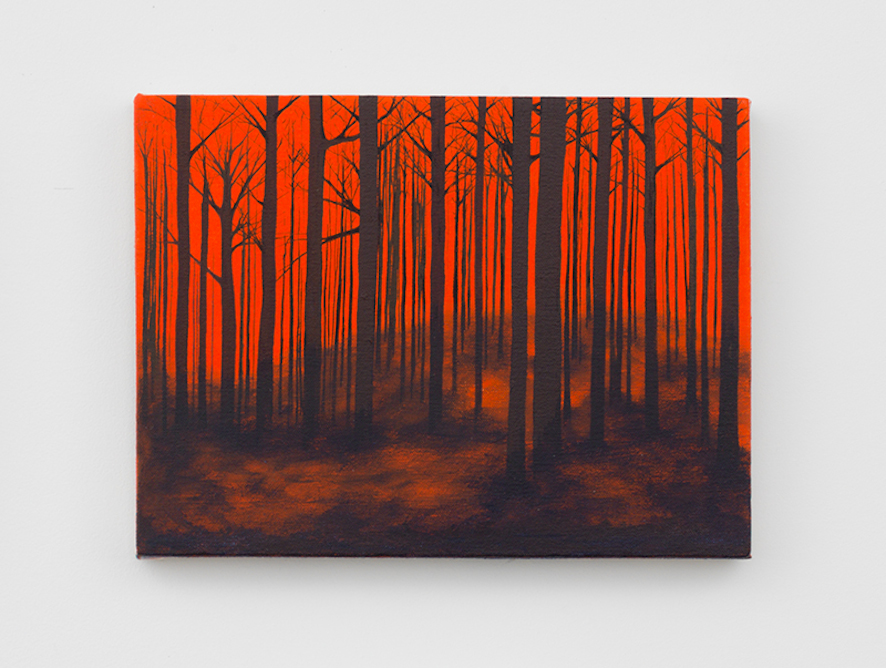 Untitled (Orange Kisatchie)